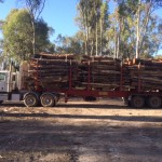 log haulage nsw