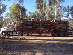 log haulage nsw