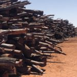 2020 Log stock pile